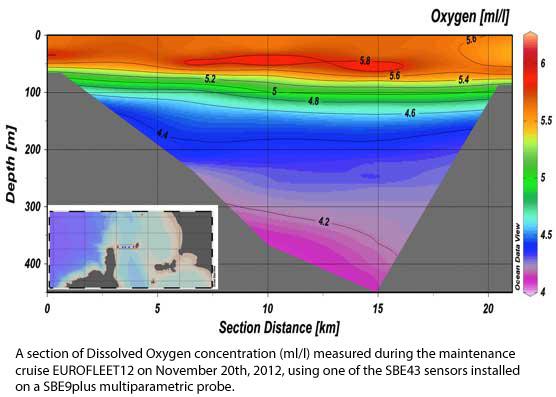 cruise-oxygen