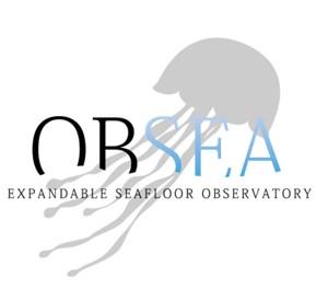 OBSEA logo