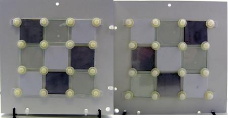 figure5-biofouling