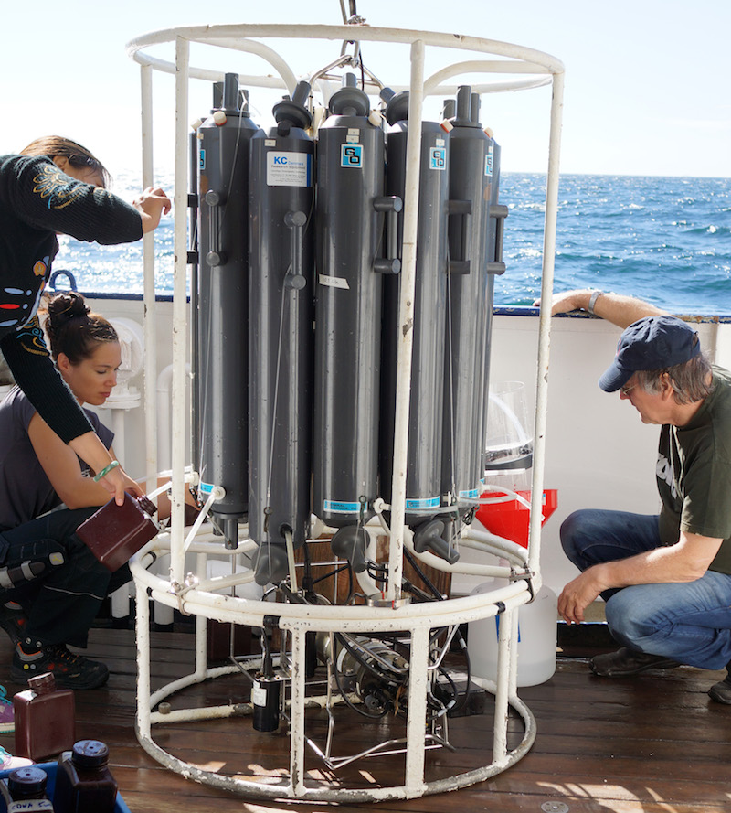 Phytoplankton biodiversity investigated with novel methods